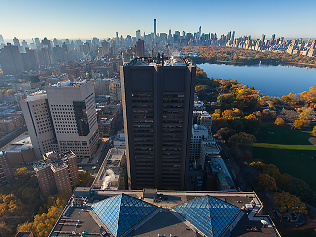 New York | EcoMedical