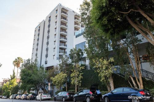 Los Angeles | EcoMedical